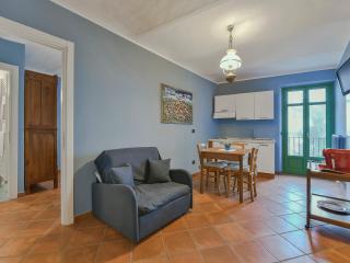 Bula Silver in the Barolo Vineyards - La Morra vacation rentals