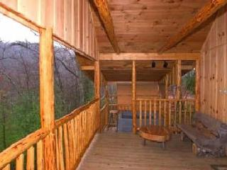 Romantic Cabin with Deck and Internet Access - Hot Springs vacation rentals