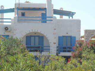 Beautiful modern Villa Delos close to the sea - Naoussa vacation rentals