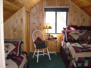 Tier Lakefront Log Charmer - City of Big Bear Lake vacation rentals