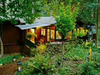 Pippin's Cottage - A Forest Haven - Woodacre vacation rentals