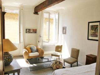 Sunny apartment in  downtown Aix en Provence - Aix-en-Provence vacation rentals