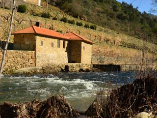 Quinta de Recião - Mill House - Lamego vacation rentals