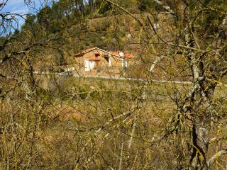 Quinta Recião-Caretaker House - Lamego vacation rentals