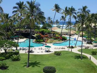 Ocean View Top Floor Luxury Suite - Lihue vacation rentals