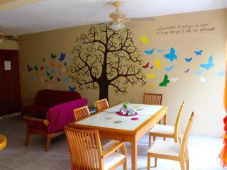 Mexican apartment - 11 people - Playa del Carmen vacation rentals