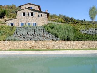 Casale Cinghiale - Greve in Chianti vacation rentals