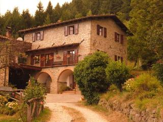Le Pianacce Appartamento per vacanze - Castiglione Di Garfagnana vacation rentals