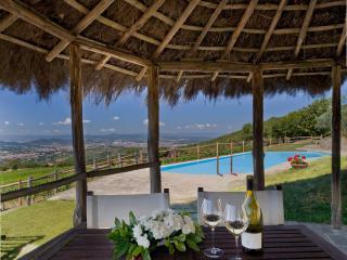 Podere di Pomaio Green Winery - Arezzo vacation rentals