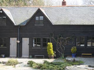 Glyngynwydd Cottages Ty Canol Mawr - Llanidloes vacation rentals
