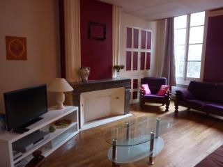 Nice Condo with Internet Access and Satellite Or Cable TV - Lectoure vacation rentals