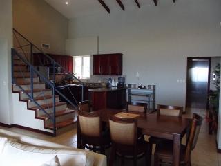 Gran Mirador #5 - Tamarindo vacation rentals