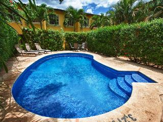 2 bedroom Apartment with Internet Access in Tamarindo - Tamarindo vacation rentals