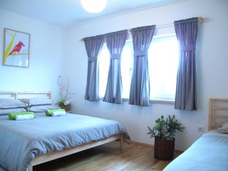Modern Triple room 15 mins walk from National Park - Plitvice Lakes National Park vacation rentals