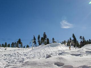 Walk to ski lifts from this charming condo for 8 - Big Bear Lake vacation rentals