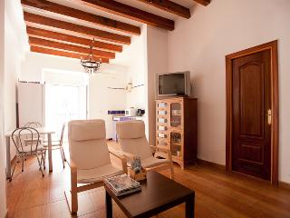Nice Condo with Television and DVD Player - Seville vacation rentals