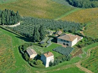 Lussuosa villa nel cuore del Chianti - Castelnuovo Berardenga vacation rentals