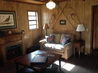 The Birds Nest-Charming Mountainside Cabin - Asheville vacation rentals