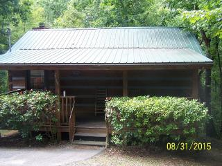 SECLUDED CABIN ONLY 6 MILES FROM PIGEON FORGE - Pigeon Forge vacation rentals