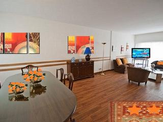 TERRACE 3/4 BRS AWESOME FARE  10RECOLETA-DOWNTOWN - Buenos Aires vacation rentals