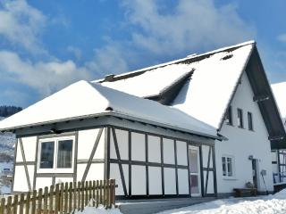Adorable 8 bedroom House in Hallenberg with Internet Access - Hallenberg vacation rentals