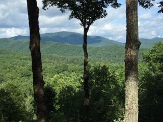 Nugget's Nest - Amazing Mtn View - Fireplace - Blue Ridge vacation rentals