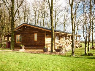 VALLEY VIEW LODGE, log cabin, panoramic views, en-suite, in Welshpool, Ref 932499 - Welshpool vacation rentals