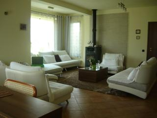 Superb Villa For Rent , Cioplea area - Predeal vacation rentals