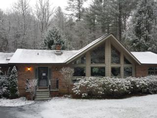 Cozy, Luxury Creekside Home close to Everything! - Brevard vacation rentals