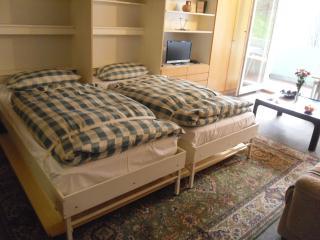 Vacation Apartment in Bad Wildbad - 409 sqft, Max. 2 people (# 9329) - Bad Wildbad vacation rentals