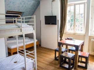 Guest Room in Freiburg im Breisgau -  (# 9347) - Freiburg im Breisgau vacation rentals