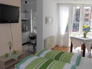 Vacation Apartment in Freiburg im Breisgau - 258 sqft, 24sqm, 1-2 persons (# 9354) - Freiburg im Breisgau vacation rentals