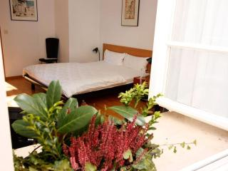 Vacation Apartment in Freiburg im Breisgau - 355 sqft, 1 bedroom, 1 living / bedroom, max. 4 people… - Freiburg im Breisgau vacation rentals