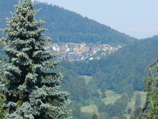 Vacation Apartment in Bad Herrenalb - 1 living / bedroom, max. 4 people (# 9406) - Bad Herrenalb vacation rentals