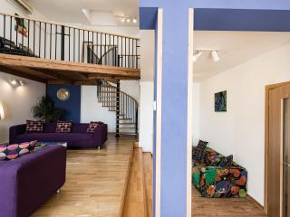 King Wenceslas  4 with free transfer on arrival - Prague vacation rentals