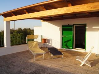 Villarzilla, in the middle of countryside - Castellana Grotte vacation rentals
