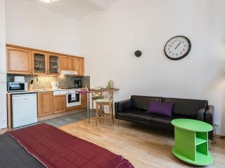 King Wenceslas Studio, free transfer on arrival - Prague vacation rentals