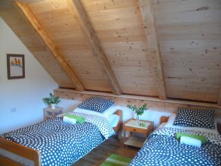 Attic Room 15 mins walk from the National Park - Plitvice Lakes National Park vacation rentals
