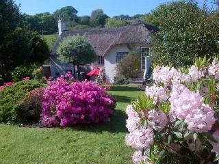 Beautiful Thatched Cottage 7 miles nw of Falmouth - Truro vacation rentals