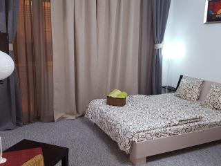 Nice Studio with Housekeeping Included and Television - Bucharest vacation rentals