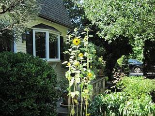 30 Snow's Lane - Provincetown vacation rentals