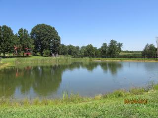 Cottage:Private Pond, Watch Hummingbirds Upclose! - London vacation rentals