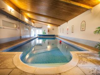 Swift Cottage - Totnes vacation rentals