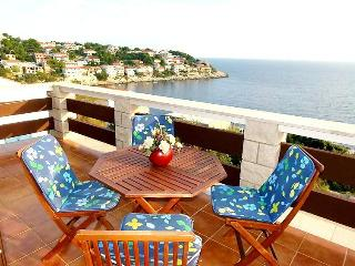 Apartments Doris / Beautiful view apartment (A5) - Zavalatica vacation rentals