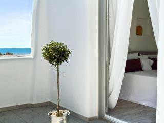 Brand new, Holiday House Alia ,next to the beach! - Agios Prokopios vacation rentals