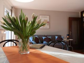 Tosca- 1bedroom apartment near the Arena - Verona vacation rentals