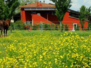 """AGRITURISMO """"ADRIANO PEDRETTI"""" - Badia Polesine vacation rentals"""