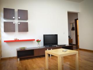 neat and tidy 1 bedroom apartment - Bucharest vacation rentals