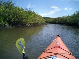 BEAUTIFUL BAY VIEW, BAY ACCESS, KAYAK FISHING - Tampa vacation rentals