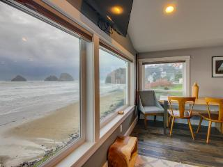 Oceanfront, dog friendly, newly remodeled - all the best! - Oceanside vacation rentals